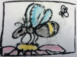 "Bees"" art by CC Willow ink, graphite & colored pencil"