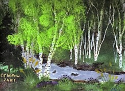 Birches At Blowout acrylic (in private collection)