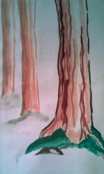 Silver Falls Redwoods watercolor