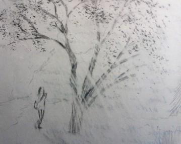 Following Tiger graphite