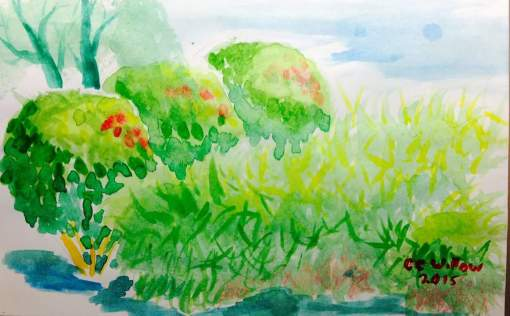 CC Willow watercolor Lunch Hour art
