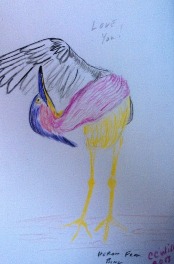 Heron colored pencil