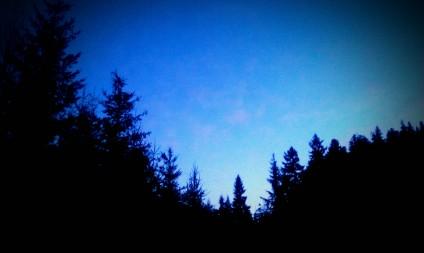 Approaching Night