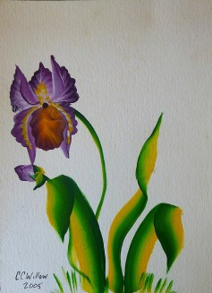 Iris 2 acrylic