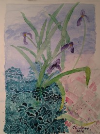iris-at-gaiety-hill-watercolor-3