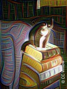 Cats Like Books