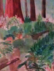 Redwood Creek14x11 watercolor and ink