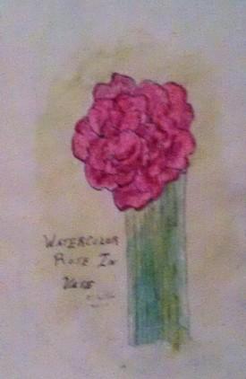Rose in Vase watercolor