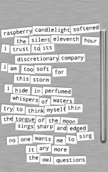 Left magnet poem cropped