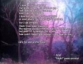 Night poem meme 002