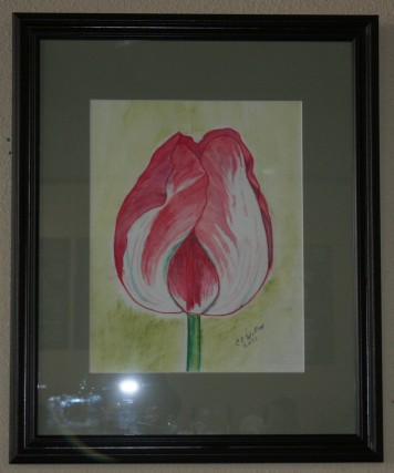 Parrot tulip watercolor Beanery Art Show 1