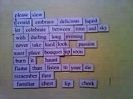 Please Slow magnet poem 001