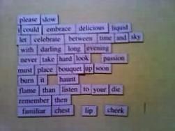 Please Slow magnet poem 001