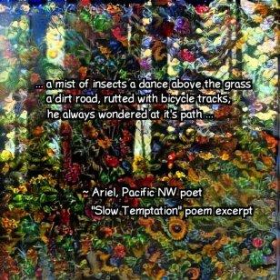 Slow Temptation poem meme square