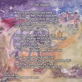 The Skipper poem meme