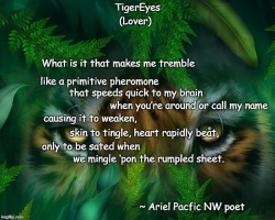 TigerEyes Lover poem meme