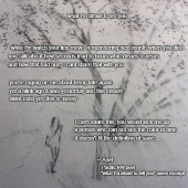 What Im Afraid To Tell You poem excerpt 001 meme