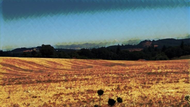 Ankany Valley gold