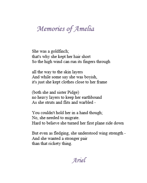 Memories of Amelia by Ariel