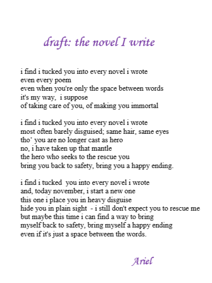 The Novel I Write draft by Ariel