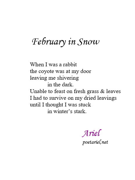 February in Snow by Ariel