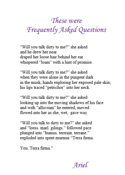 These Were Frequently Asked Questions by Ariel