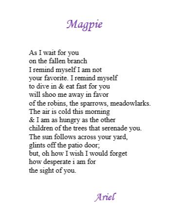 Magpie by Ariel