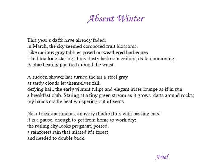 Absent Winter by Ariel